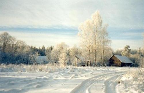 ziemas_skats2