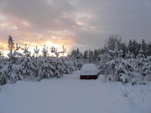 auto_sniegaa