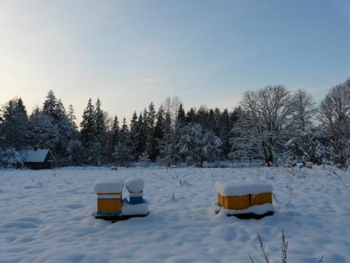 nukl_snieg3