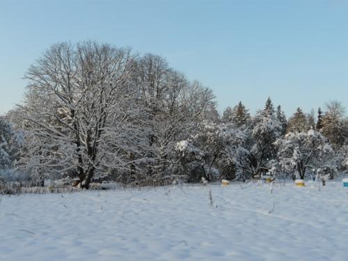 nukl_snieg4