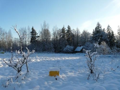 nukl_sniegs