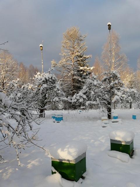 Stropi_sniegs