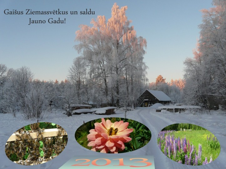 Ziemassvetkos_2013lv